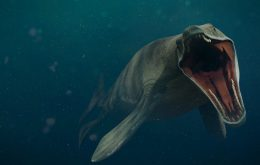 Monstro marinho de 5 metros de comprimento viveu em oceano que cobria o Kansas