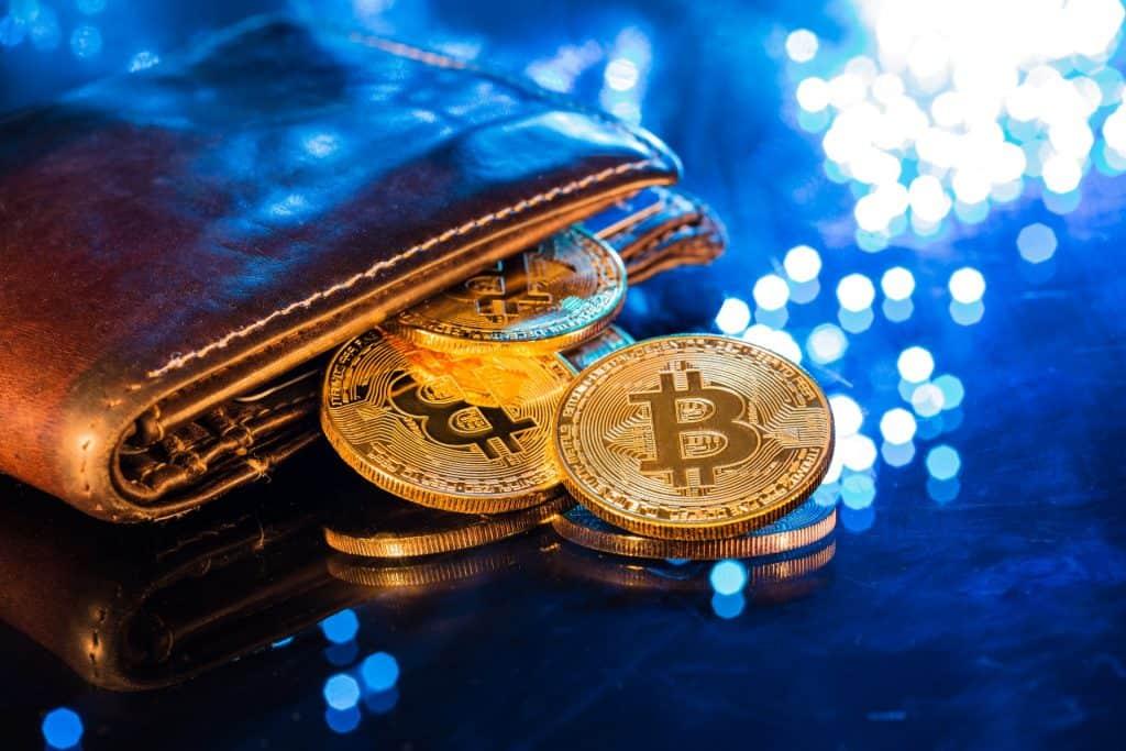 Carteira com bitcoins