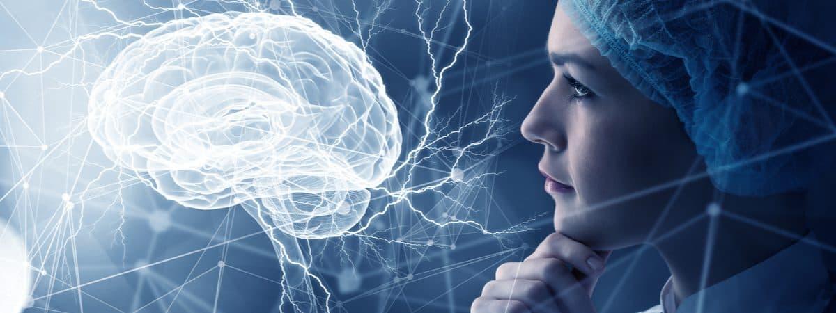 estudo do cérebro