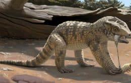 Pesquisadores descobrem mini crocodilo pré-histórico em Minas Gerais