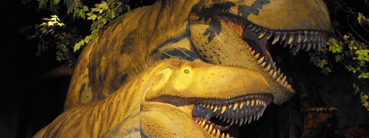 Modelos de Dapletossauros