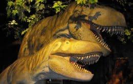 Estrutura craniana de precursor do tiranossauro indica maior variedade óssea da espécie