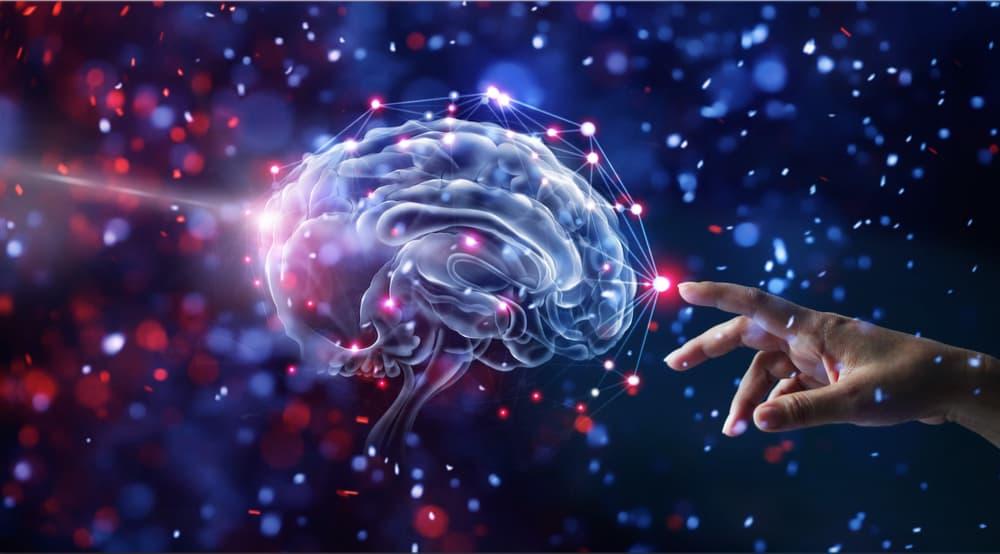 Imagem de um cérebro sendo tocado por uma mão humana. Projeto brasileiro de mapeamento cerebral será financiado pela Chan Zuckerberg Initiative, do cofundador do Facebook