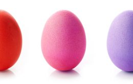 The Egg: Discovering the Math in Nature's Most Perfect Form