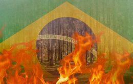 Fires are responsible for more than 47 thousand hospitalizations in Brazil per year