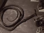 'Indiana Jones': novo jogo da Bethesda pode ser exclusivo para Xbox