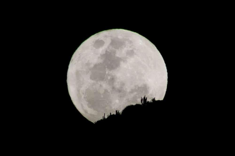 Imagem da Lua da Colheita por trás de alguns cactos em região desértica