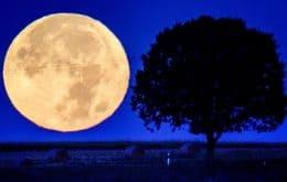 """O que é a """"Lua da Colheita""""? Veja imagens do fenômeno que antecede a primavera"""