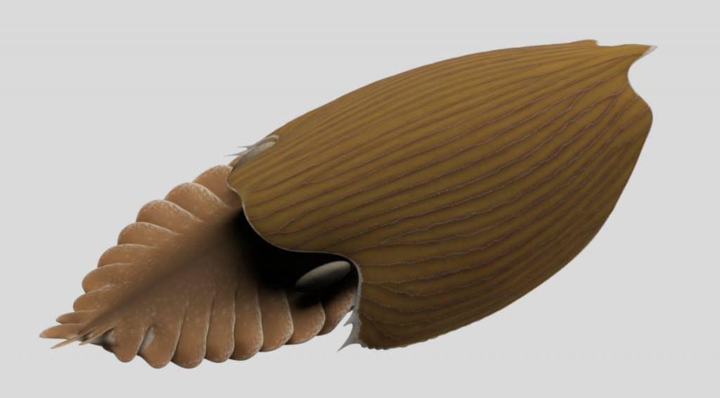 Renderização em 3D do Titanokorys gainesi