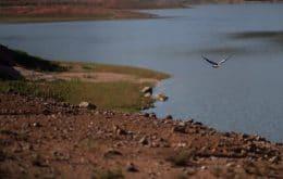Cientistas alertam: secas nos rios Paraná e Prata podem piorar mais ainda