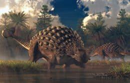 """Dinossauro com """"armadura de espinhos"""" é descoberto na África"""