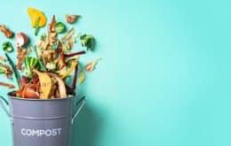 Cientistas conseguem tirar energia de comidas jogadas no lixo