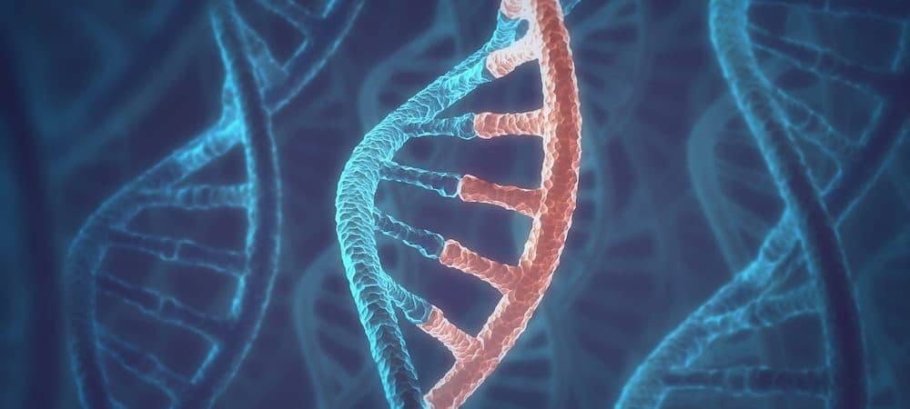 RNA celular Crédito: Shutterstock