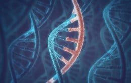 RNA released by cells helps recovery after injury or illness