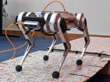"""""""Robô-guepardo"""" do MIT aprendeu a pular, porque a humanidade não conhece limites"""