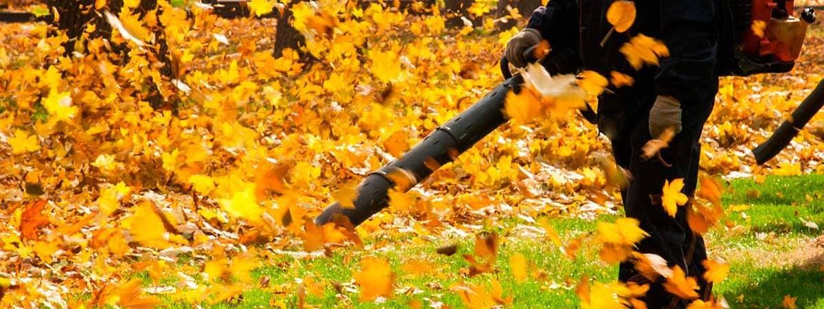 Operador de soplador de hojas de parque en una tarde