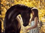 Estudo genético descobre onde e quando cavalos começaram a ser domesticados