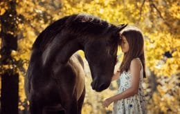 Genetic study finds where and when horses began to be domesticated