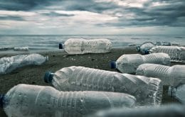 Los investigadores utilizan bacterias como solución para los desechos plásticos