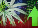 Maconha: startups são seduzidas por mercado bilionário da cannabis, ainda sem autorização de cultivo no Brasil