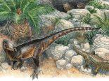 Nova espécie de dinossauro quase não foi descoberta por erro de armazenamento