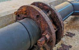 Bactéria que se alimenta de metais promete reduzir poluição mineral no Chile