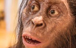 A pegada humana mais antiga da pré-história foi encontrada na Grécia