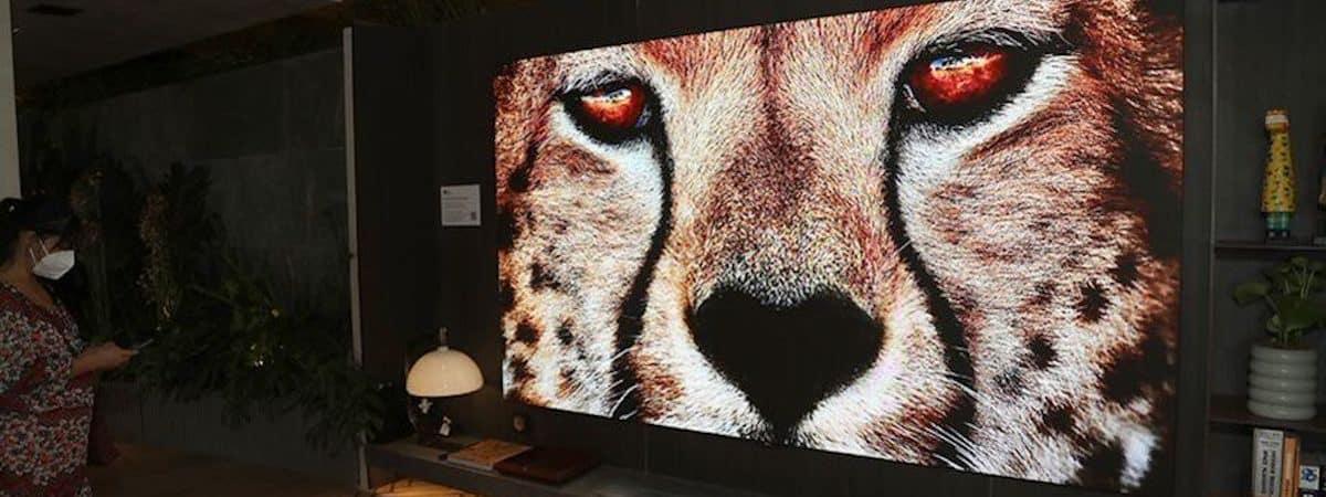 TV LG LAEC015 (Imagem: divulgação/LG)